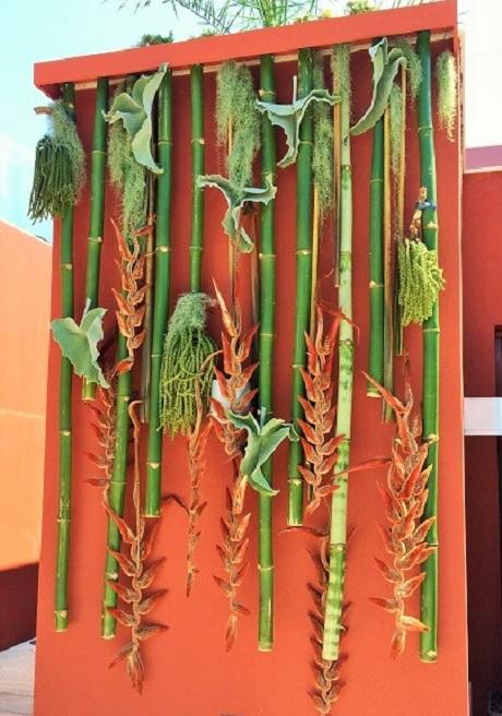 Décor plantes exotiques