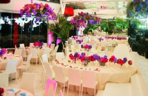 Зал с орхидеями на Ибице